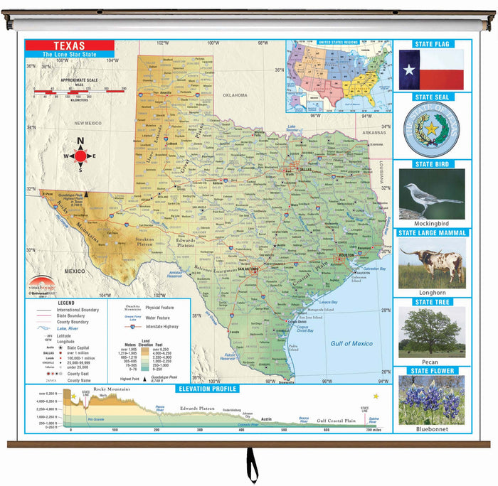 Texas State Primary Thematic Classroom Wall Map