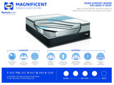 Sealy Magnificent Proback Eurotop Firm Mattress Set