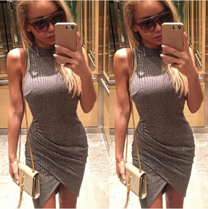 Turtle Neck Short Mini Slim Dress