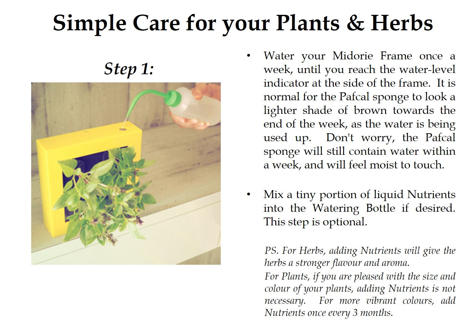 Midorie Garden_Pafcal_Care Instructions_Step 1