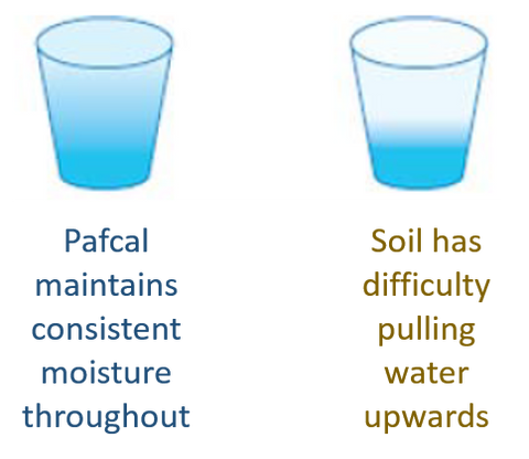 Pafcal vs Soil