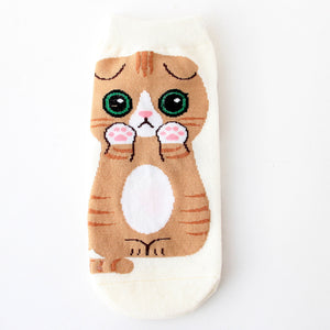 cute cat socks kawaii