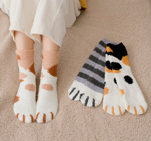 cat paws room socks warm and cozy