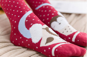 winter socks cotton cozy and warm| Boutique Local NOVMTL