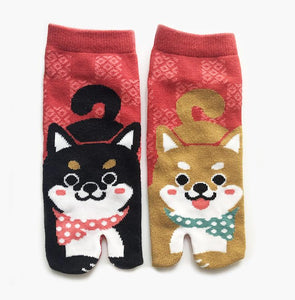 kawaii cute socks toe socks corgi puppy cotton