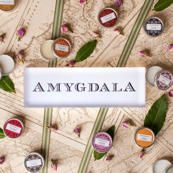 AMYGDALA: HOW WE GOT OUR NAME