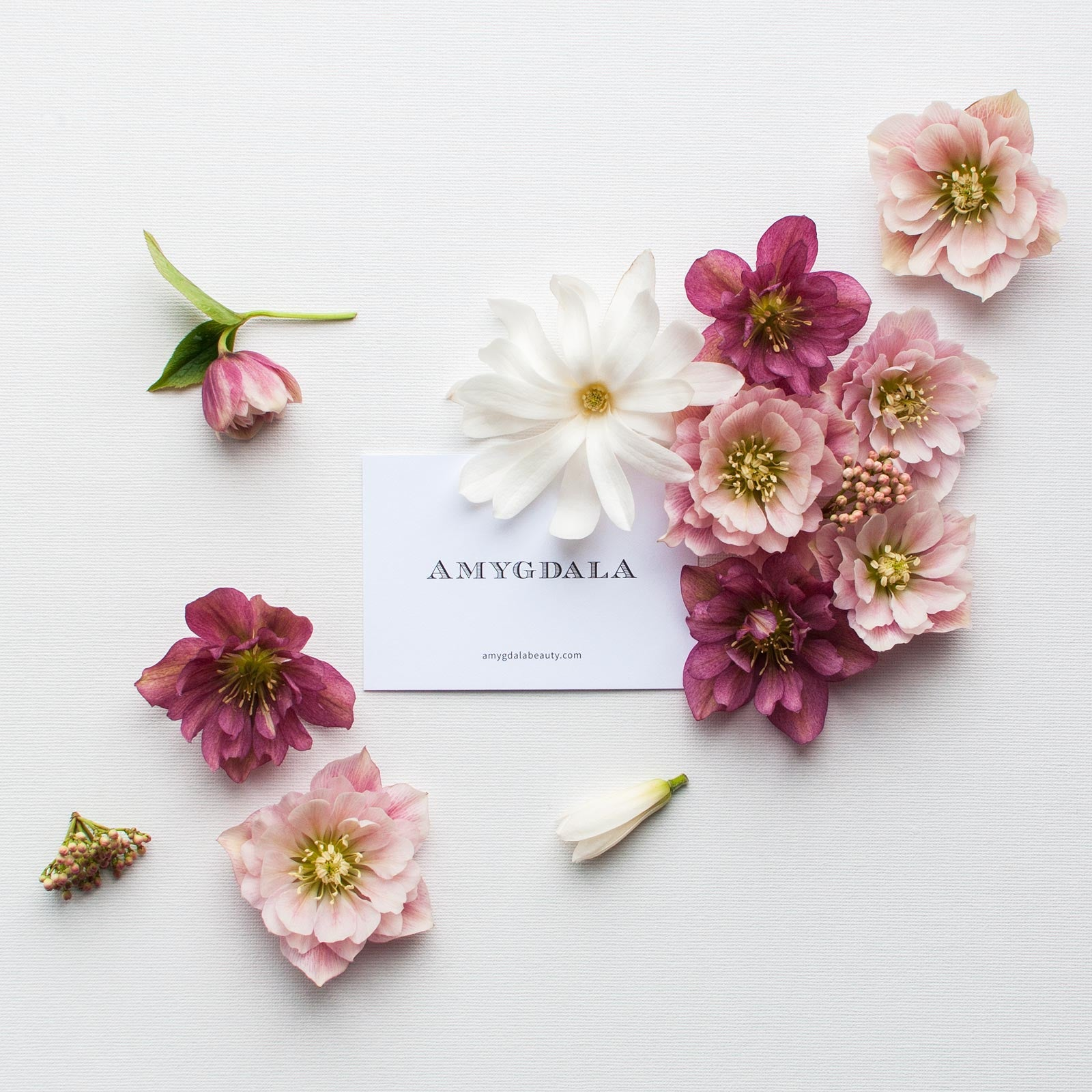 Amygdala Perfume Brand with flowers