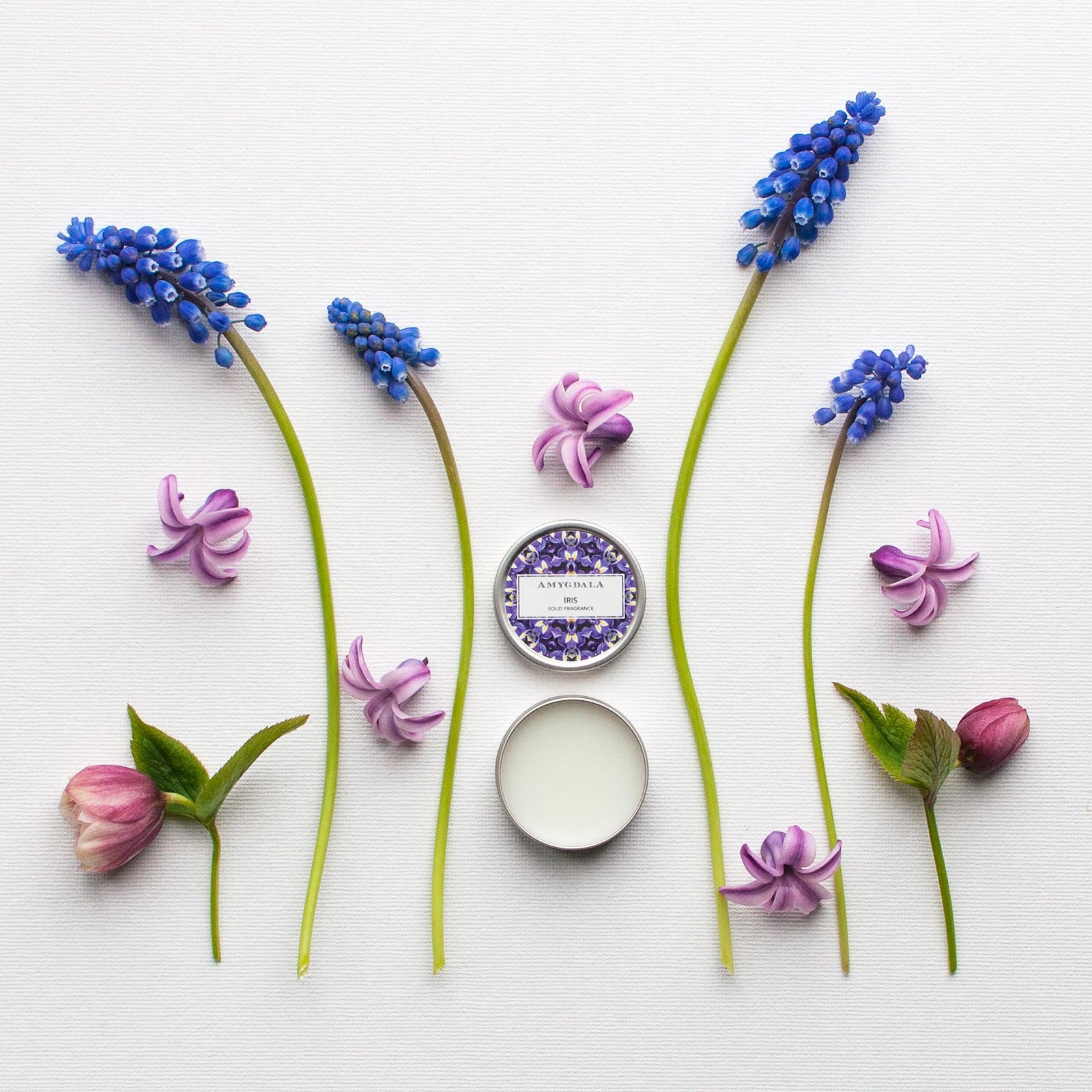 Iris solid perfume with fresh flowers