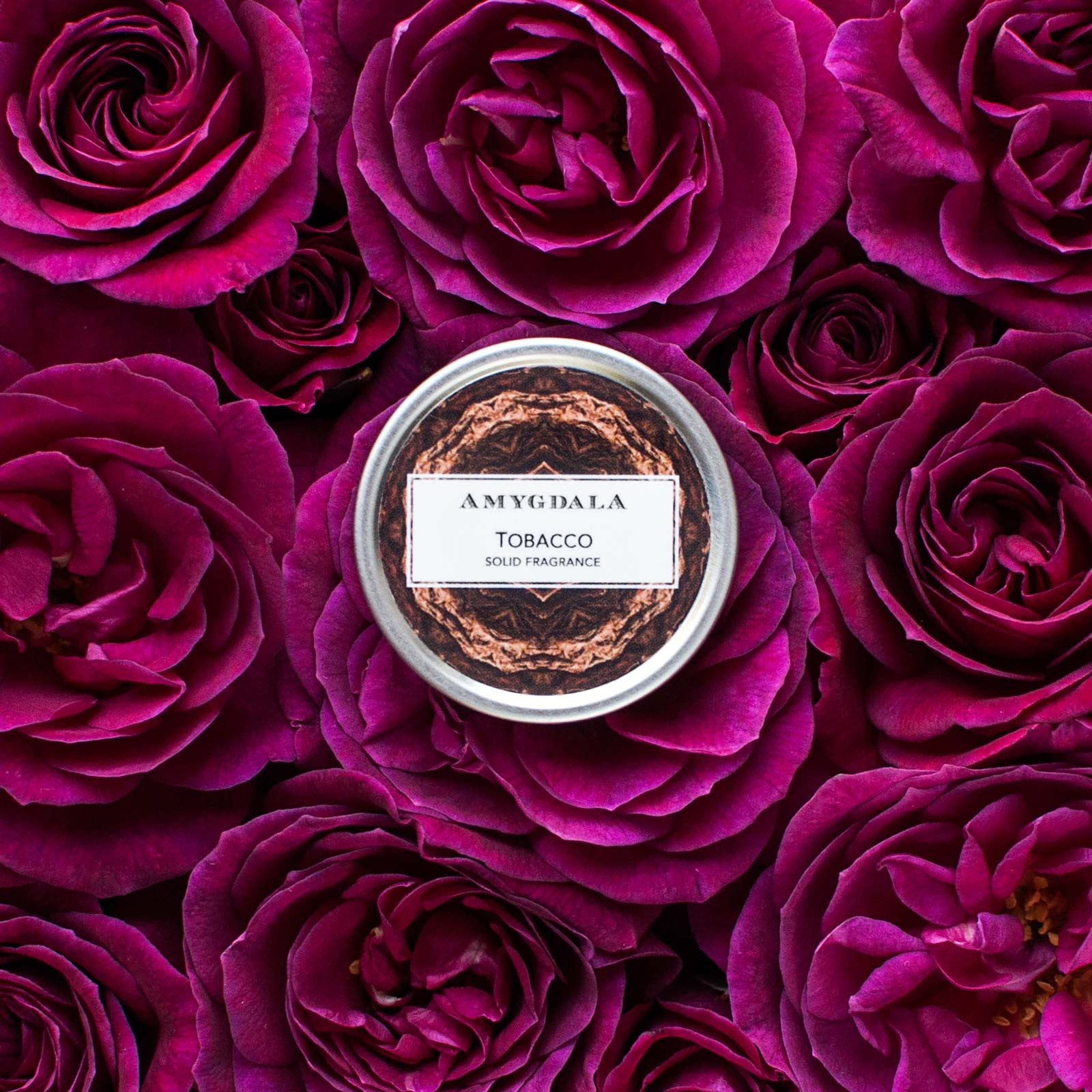 beautiful dark rose and tobacco solid perfume scent