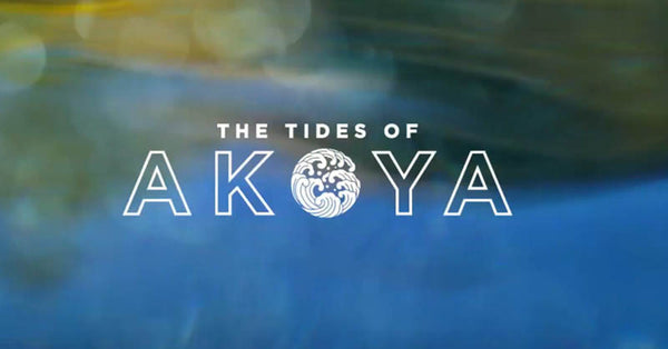 The Tides Of Akoya