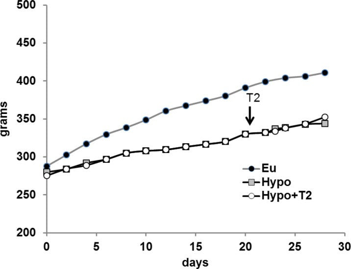 3,5-Diiodo-L-thyronine Activates Brown Adipose Tissue Thermogenesis