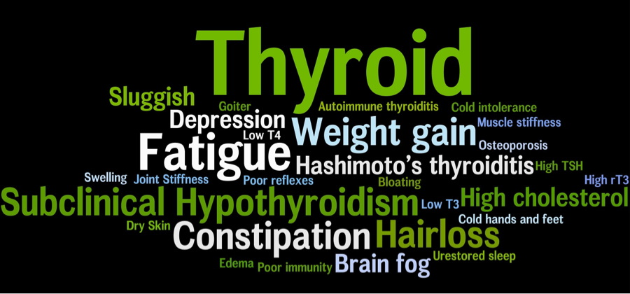 How Does Your Thyroid Gland Affect Overall Health?