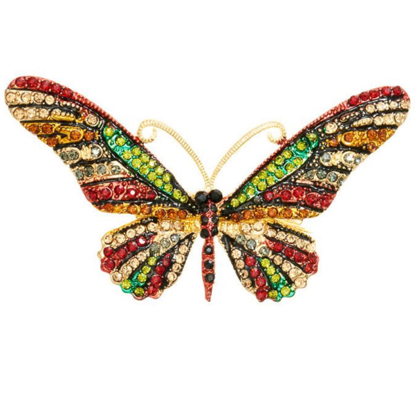 Rosie Fox Multi Coloured Butterfly Hair Clip & Brooch