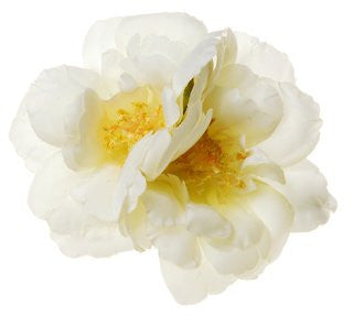 Rosie Fox Ivory Rose Hairclip & Brooch - Jewella accessories