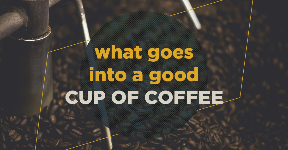 What Goes Into a Good Cup of Coffee