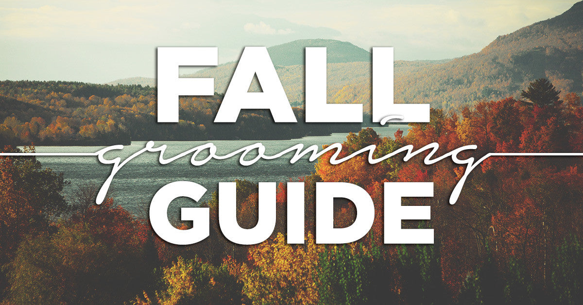 Fall Grooming Guide