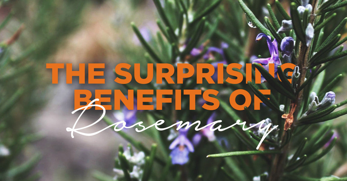 The Surprising Benefits of Rosemary