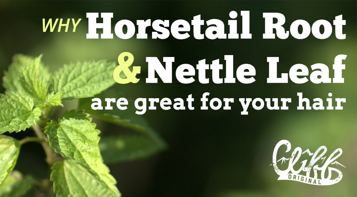 All natural horsetail root and nettle leaf hair care products