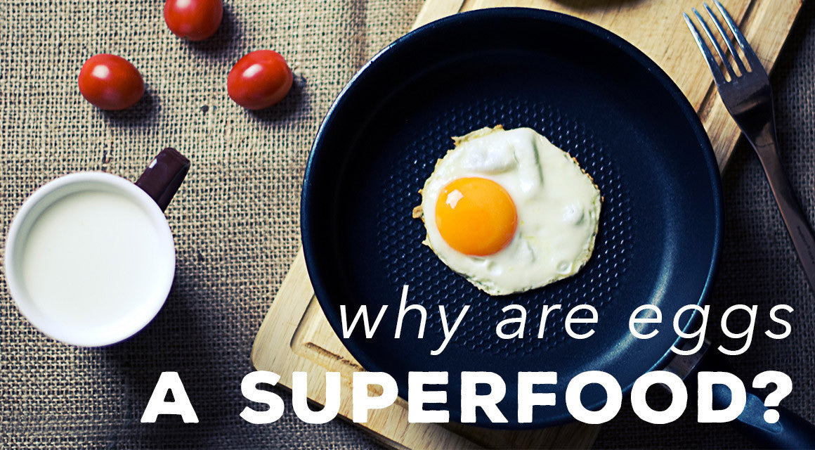 Why Are Eggs a Superfood
