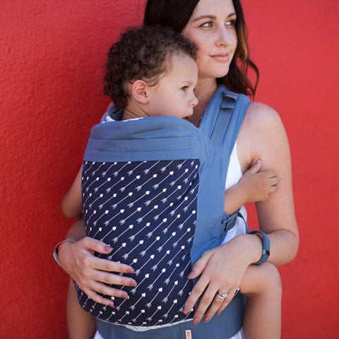Carrying Toddlers – Do I need a Toddler Carrier?