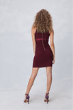 Illusion Bodycon Dress in Wine