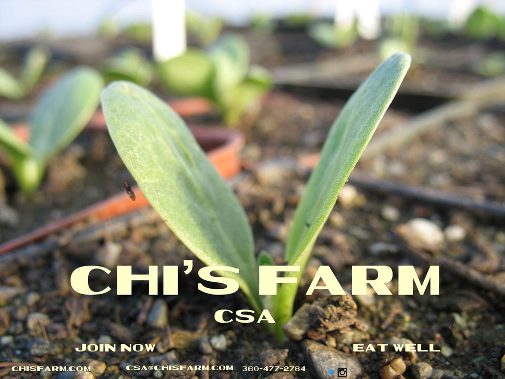 CSA Farmshare 2020-SPRING SEASON ONLY- vegetables only 6 weeks