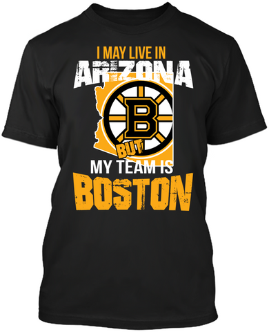 Boston Bruins - Arizona