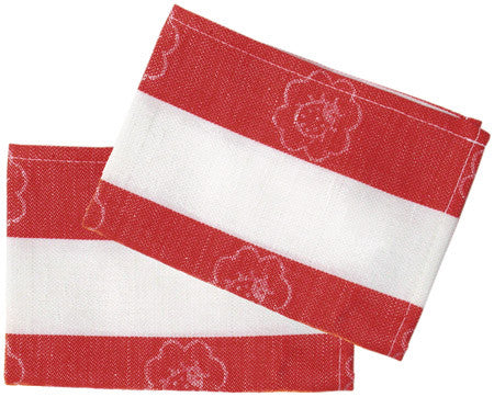 Dish cloth (2) child size