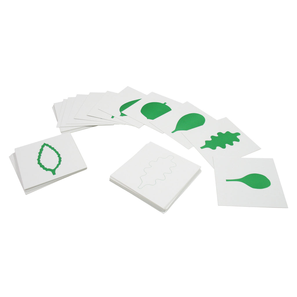 Leaf Cards for Leaf Cabinet