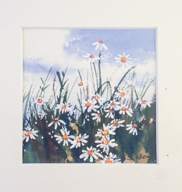 Painting - Mt Buffalo alpine daisies