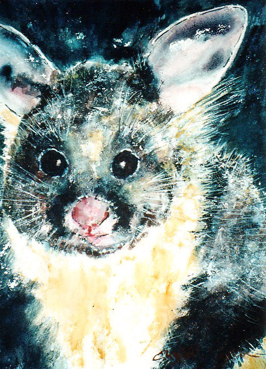 Print - Yellow Bellied Glider