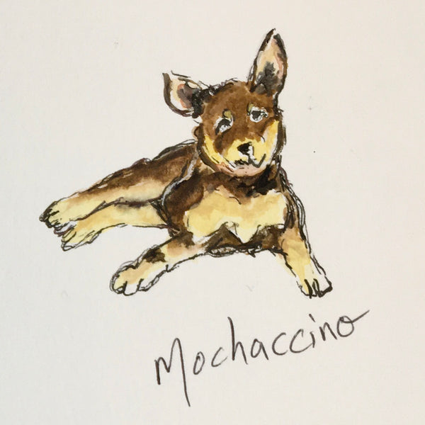 Card (coffee dogs collection) - mochaccino