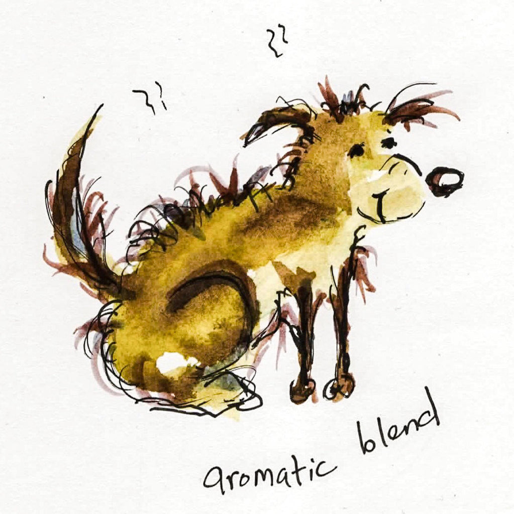 Card (Coffee dogs collection) - aromatic blend
