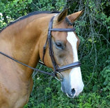Red Barn Ocala Hunter Bridle