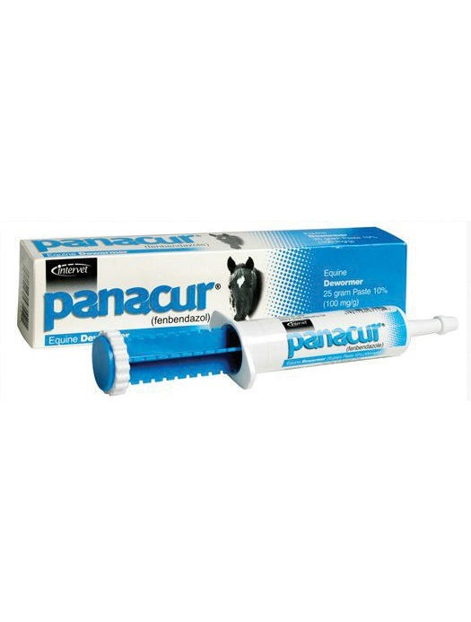 Panacur Equine Paste Dewormer