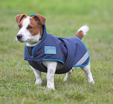 Shires Tempest Plus Dog Coat