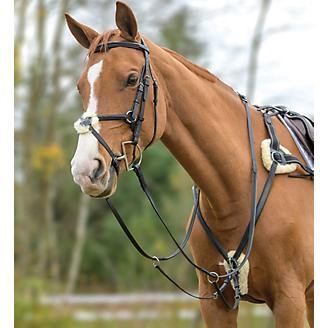 Shires 5-Point Padded Breastplate