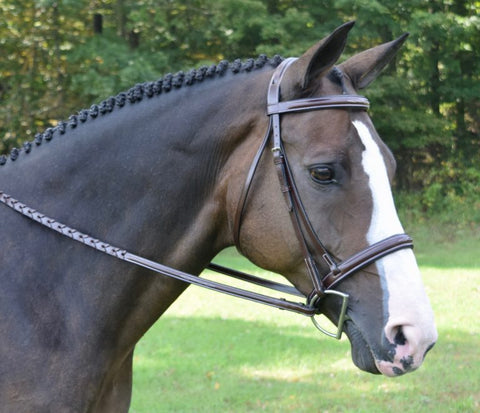 Red Barn by KL Select Spirit Hunter Bridle