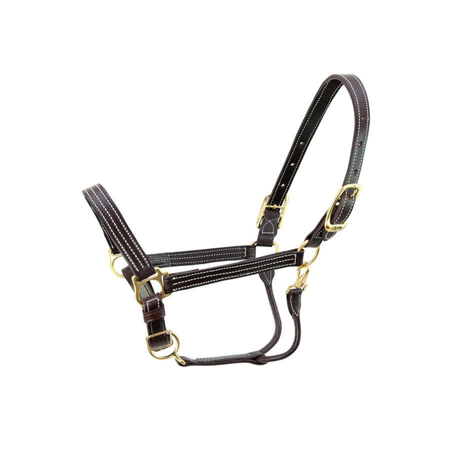 Walsh Kentucky Triple Stitched Leather Halter