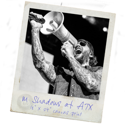 M Shadows<br>Avenged Sevenfold