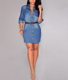 2015 Fashion Women Jeans Dress Elegant Autumn Winter Long Sleeve Slim Waist Denim Dresses Party Office Vestidos Plus Size