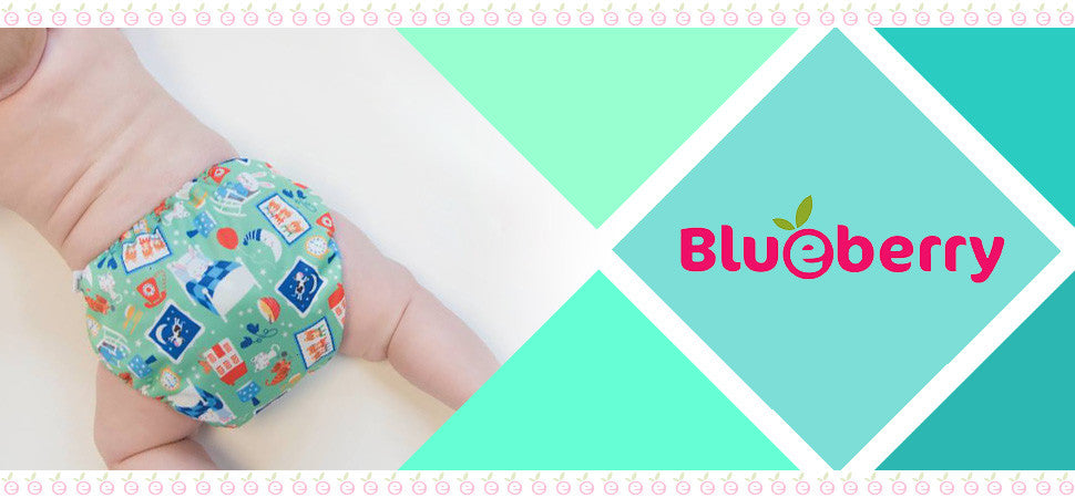 Blueberry Cloth Diapers