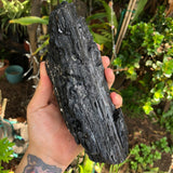 XL Rainbow Aura Black Tourmaline
