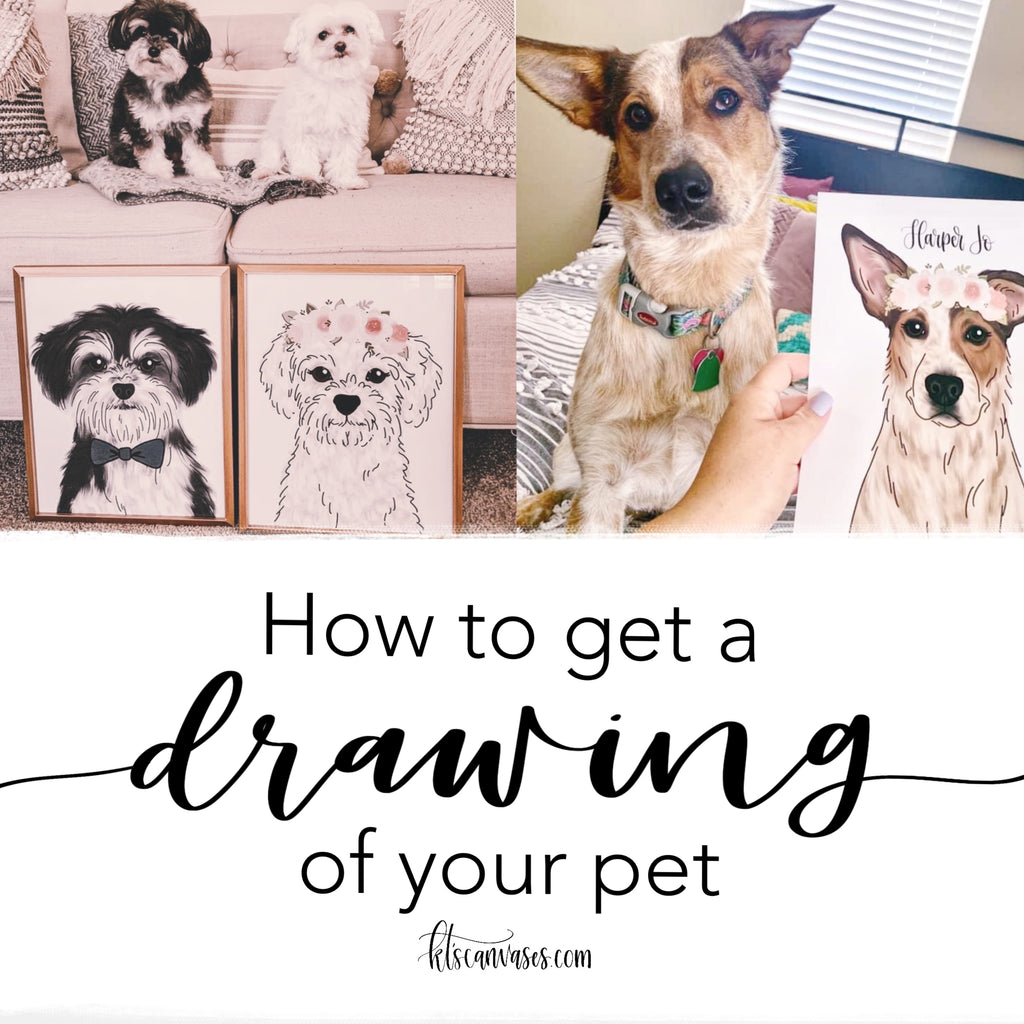 How to get a drawing of your pet