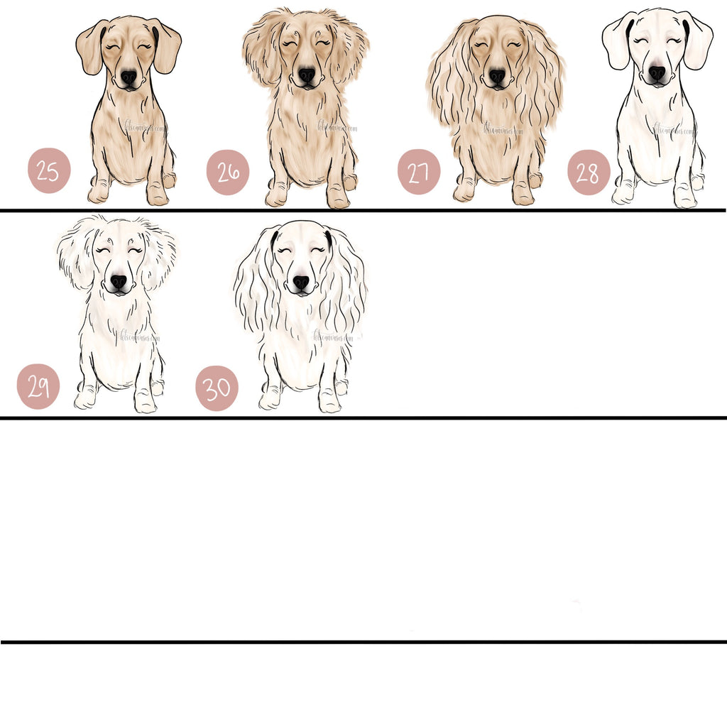 Choose Your DACHSHUND Art Print