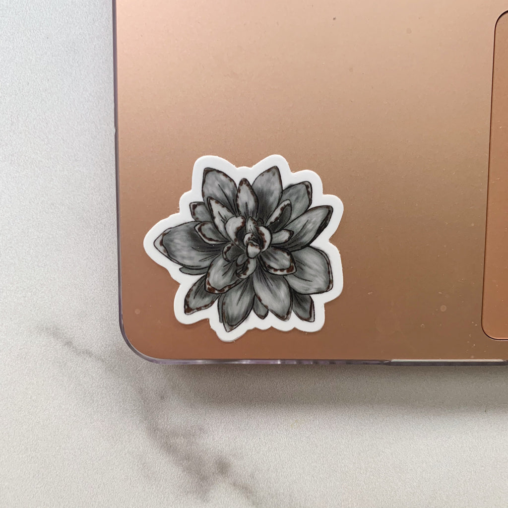 Mini Panda Plant Succulent Sticker
