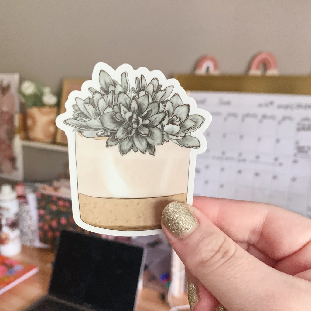 Potted Succulents Clear Sticker