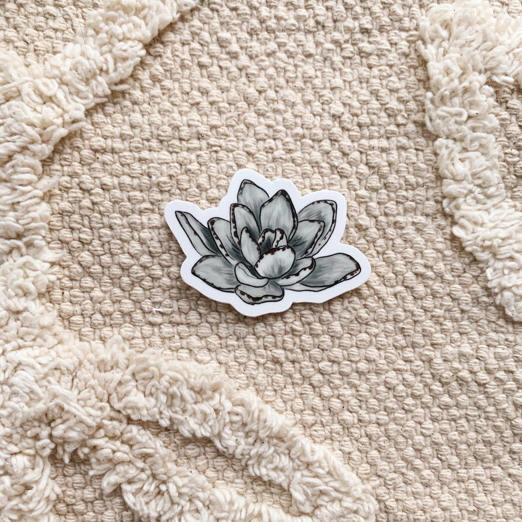 Another Mini Panda Plant Succulent Sticker