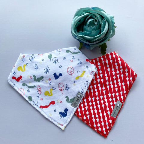 Dinosaur & Poppies Bib Set
