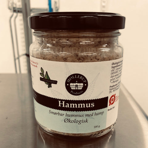 Hammus - test version 2